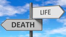 Death And Life As A Choice - P...