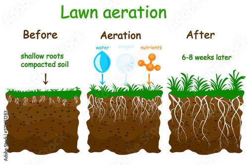 Lawn aeration stage illustration Canvas Print
