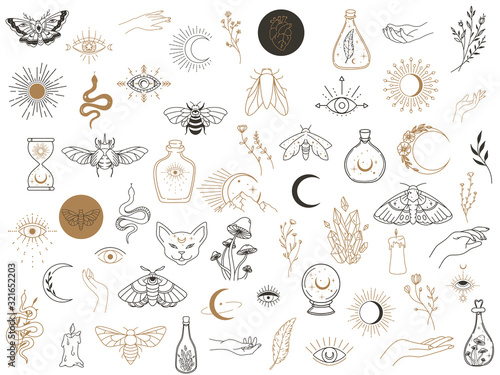 Fotografia Vector witch magic design elements set