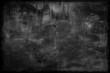 Old dark horror grunge texture.