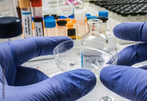 Nurse examines coronavirus test on petri dish in hospital, concept image Wallpaper Mural