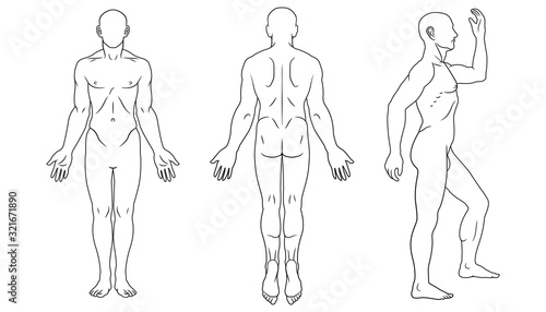Human body front, back and side views Canvas Print