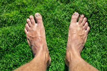 Feet Without Shoes Stand On Green Grass