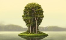 Nature And Environment Concept...