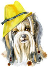 Watercolor Portrait Of Yorkshi...