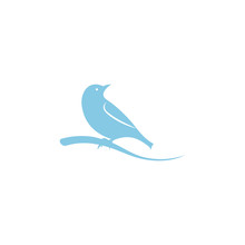 Bird Design Logo Icon Vector