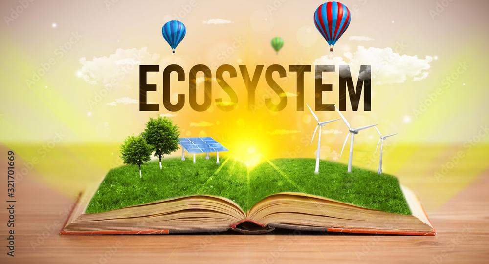 Fototapeta Open book with ECOSYSTEM inscription, renewable energy concept