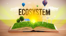 Open Book With ECOSYSTEM Inscr...