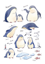Watercolor Set With Penguins, ...