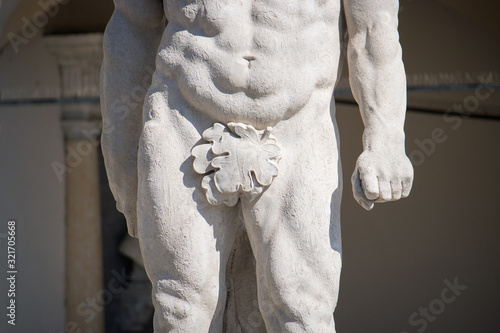 Obraz na plátne censore concept, leaf covering genitals of a statue