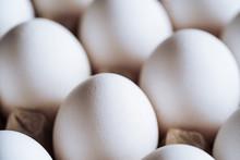 Home Grown Organic Eggs In Car...