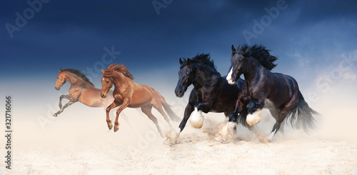 Fotomural A herd of black and red horses galloping in the sand against the background of a stormy sky