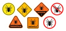 Tarantula Danger Sign. Isolate...