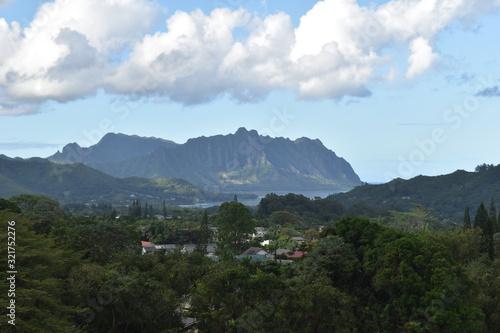 Hawaii Mountainside