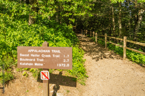 Canvastavla Appalachian trail sign in Great Smoky Mountains National Park, Tennessee
