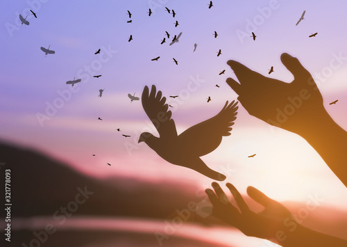 Fototapeta Woman praying and free bird enjoying nature on sunset background, hope concept . obraz na płótnie