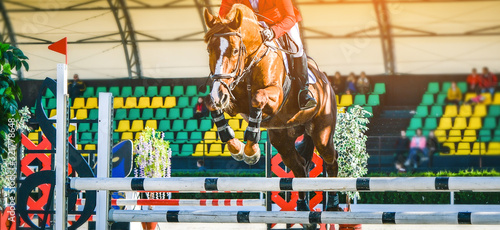 Fototapeta Riderl on sorrel horse in jumping show, equestrian sports. Light-brown horse and sportsman in uniform going to jump. Horizontal web header or banner design. obraz