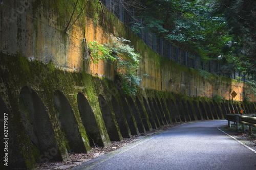 Photo 山道と古い擁壁