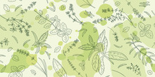 Hand Drawn Sketch With Herbs And Plants. Seamless Pattern.