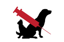 Vector Silhouette Of Dog And C...