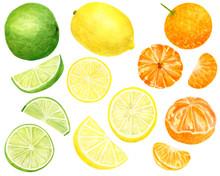 Watercolor Fresh Lemon, Tanger...
