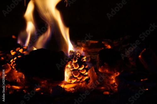 Pommes de pain et flammes Canvas Print