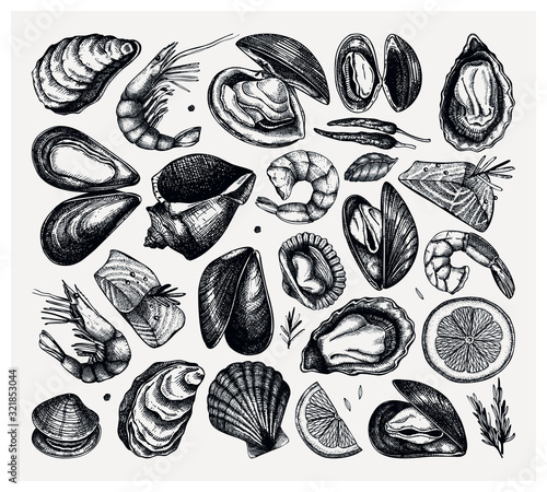 Vector seafood collection Canvas-taulu