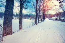 Winter Snowy Country Road Alon...
