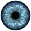 human blue eye iris closeup
