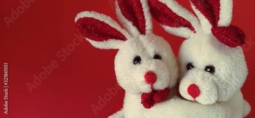Photo Two white plush rabbits cuddling