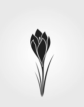 Crocus Flower Black Silhouette...