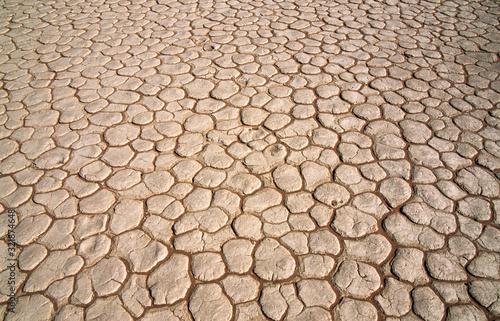 Zeichen des Klimawandels und der Erderwärmung - Ausgetrockneter Boden in  Namibi Canvas Print