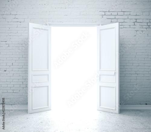 Bright light through an open door Canvas Print