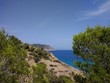 Beautiful shot of the beach covered in plants and trees in Ibiza, Spain