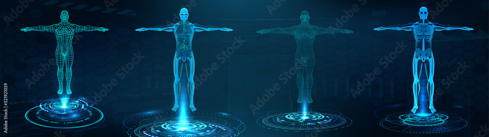 Fototapeta Human body polygonal wireframe and Transparent human body with anatomy of the structure of internal organs. Futuristic hologram scan, 3D x-ray Body in HUD style. Healthcare vector illustration