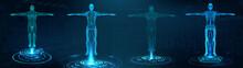 Human Body Polygonal Wireframe...