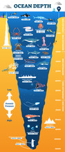 Ocean Depth Underwater Wildlife Infographic, Vector Illustration Educational Oceanography Diagram
