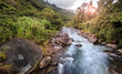 Leinwanddruck Bild Mountain stream in Costa Rican forest