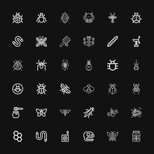 Editable 36 Insect Icons For W...