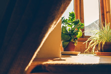 Calm Atmosphere Of Window With...