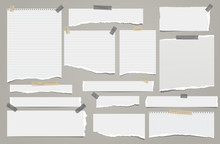Set Of Torn White Lined Note, ...