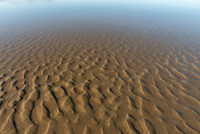 Beach Sand At Low Tide