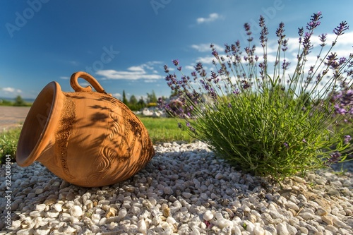 Fototapeta Clay pitcher and flowers on the ground with a garden on the blurry background under the sunlight obraz