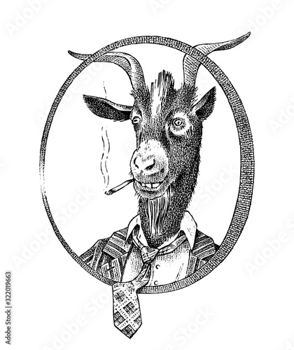 Smoking goat student or sheep Canvas Print