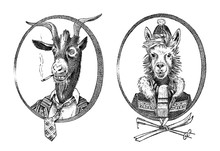 Animal Character. Smoking Goat Student And Alpaca Or Llama Or Guanaco Skier. Hand Drawn Portrait. Engraved Old Monochrome Sketch For Card, Label Or Tattoo. Anthropomorphism In Hipster Style.