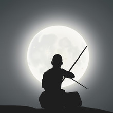 Kung Fu Master Under The Moonl...