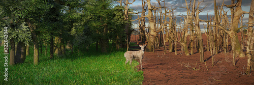 Cuadros en Lienzo deer in past and future forest, climate change crisis, global warming impact on