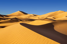 Sand Dunes In The Arabian Desert