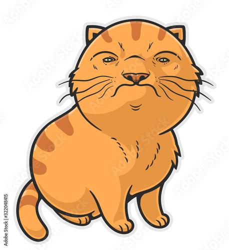 Fotomural Funny brutal cat