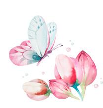 Cute Fairy Character Watercolo...